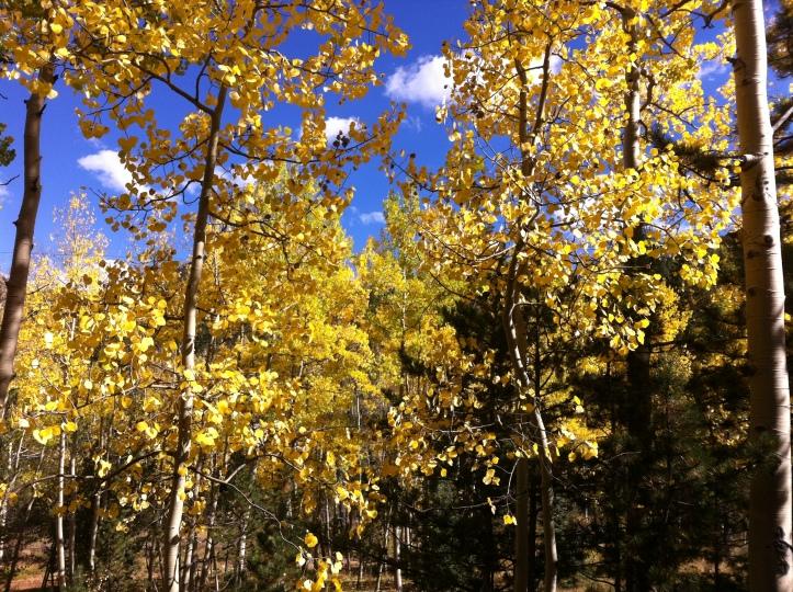 Colorado vacation 107.JPG
